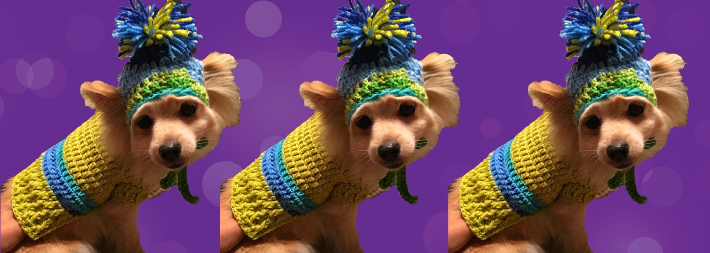 Woodlawn Pet Fashions dog scarves, cat knits