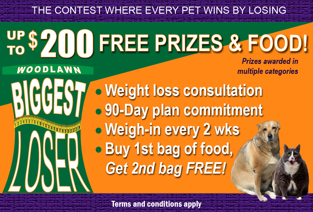 Woodlawn's Biggest Loser Challenge for Pets